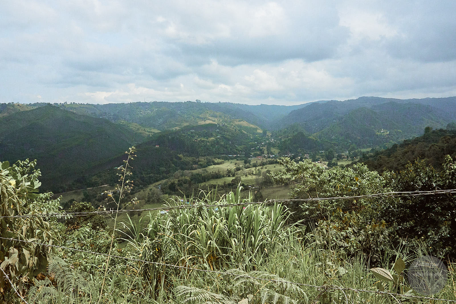 view from salento colombia